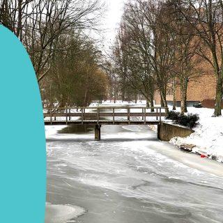 📷: Amstelveen, Netherlands, TODAY! ❄Rate from one to very much snow!❄ Welke marketingactiviteiten binnen jouw bedrijf doe je nu zelf maar zou je het liefste willen uitbesteden aan iemand anders?🤔 Infinity Marketing helpt jou graag!😁 Voor meer informatie over de mogelijkheden kun je een DM sturen of een kijkje nemen op onze website #linkinbio #snow #sneeuwen #amstelveen #onlinemarketing #uitbesteden #uitbesteding #marketing #geentijd #makkelijkermaken #wijhelpen